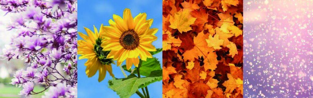 画像に alt 属性が指定されていません。ファイル名: season-1024x320.jpg
